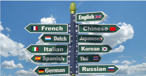 Traductor profesional Inglés